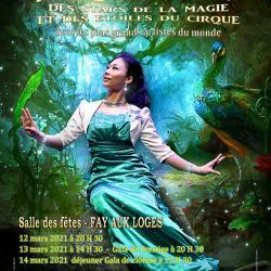 Projet de l affiche officielle du festival 2021 des stars de la magie et des etoiles du cirque v1